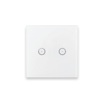 Smart Home Zigbee Smart Switch 2 Dev