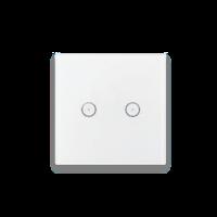 Smart Home Zigbee Smart Switch 2 Dev