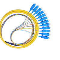 Pigtail 12 Fiber SC/UPC 1M